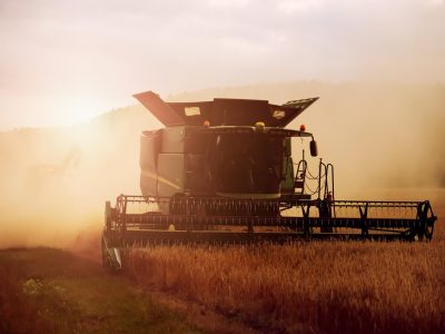 Post Harvest Management